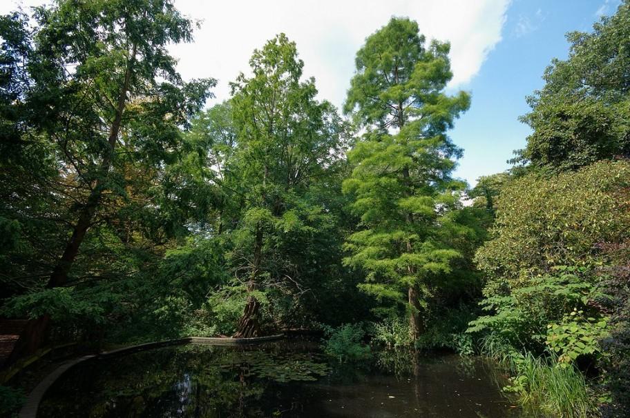 Holland Park,