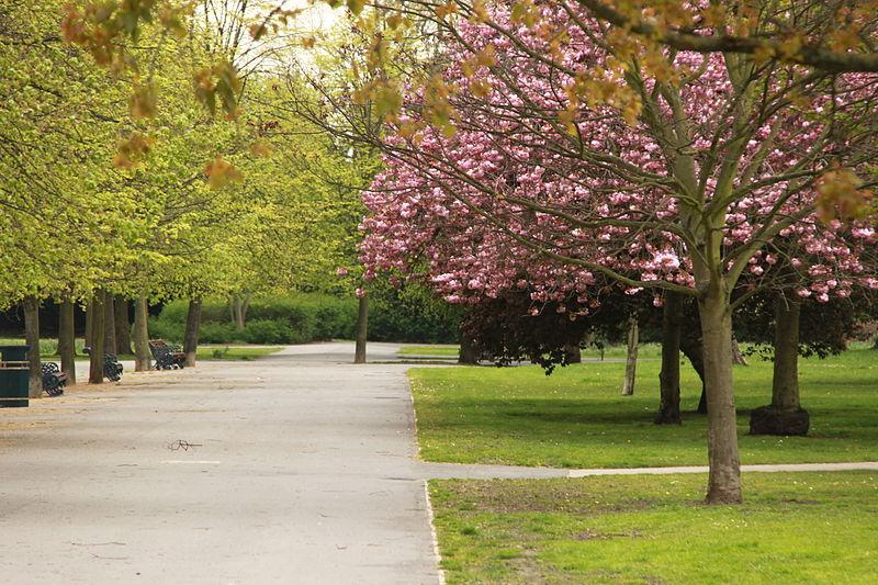 Victoria_Park_london